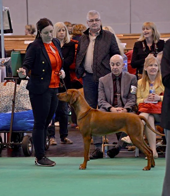 zoe-crufts2014-march
